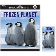 2018 Frozen Planet Calendar & Diary Christmas Birthday Gift Square Home Office Arctic Antarctica Penguins Polar Whales Life