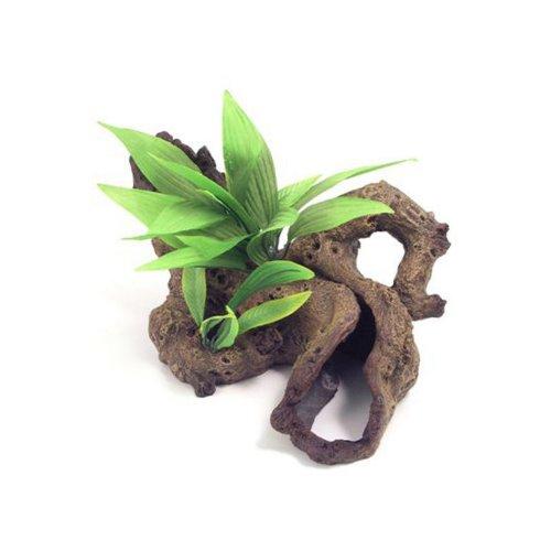 Rosewood Blue Ribbon Decor Mopani Wood With Plants Ornament