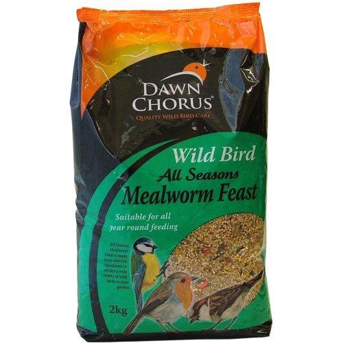 Dawn Chorus Wild Bird Insect & Mealworm Feast 2kg