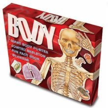 BODY SKELETON BOX