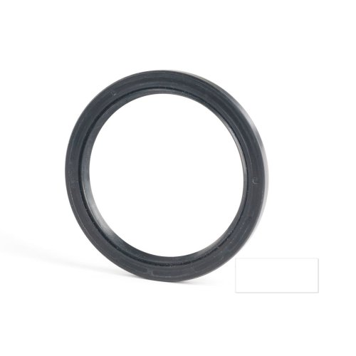 6x19x7mm Oil Seal Nitrile Double Lip With Spring 5 Pack