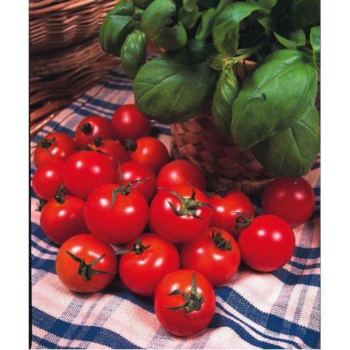 Vegetable - Tomato - Gardeners Delight - 150 Seeds