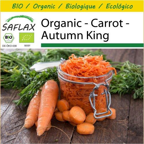 SAFLAX Potting Set - Organic - Carrot - Autumn King - 1000 certified organic seeds  - Daucus