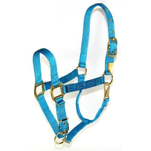 Hamilton 1-Inch Nylon Halter with Adjustable Chin, Ocean Blue - Average Size (800-1100 lbs.)