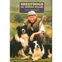 Sheepdogs: My Faithful Friends