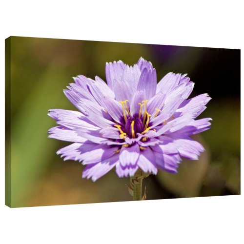 Purple Flower Canvas Wall Art Picture Print