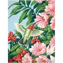 Dpw91310 - Paintsworks Learn to Paint - Hummingbirds & Fuchsias