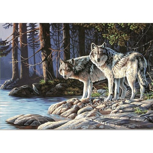 Dpw91445 - Paintsworks Paint by Numbers - Gray Wolves