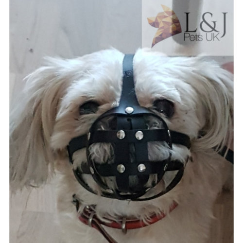 Leather Dog Muzzle for Shih Tzu and other dog's