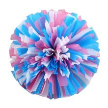 2 Pcs Cheerleading Cheer Pom Poms Dance Cheerleader Pom Poms Sports