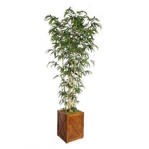 Minx NY VHX116207 Laura Ashley 81 in. Tall Natural Bamboo Tree in 13 in. Fiberstone Planter