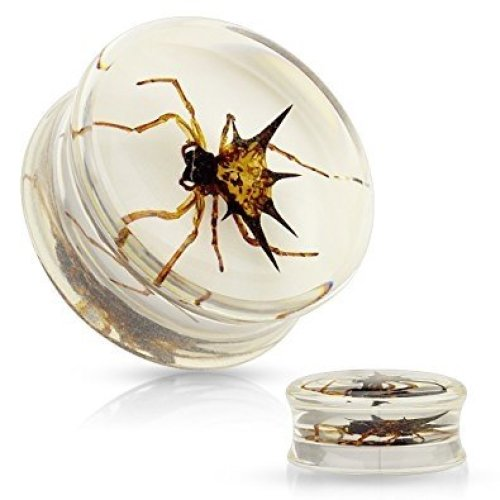 Real Spider Insect Inlay in Poly Resin Ear Tunnel Saddle Plug