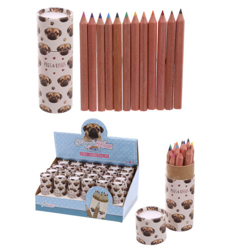 Fun Kids Colouring Pencil Tube - Pug Design