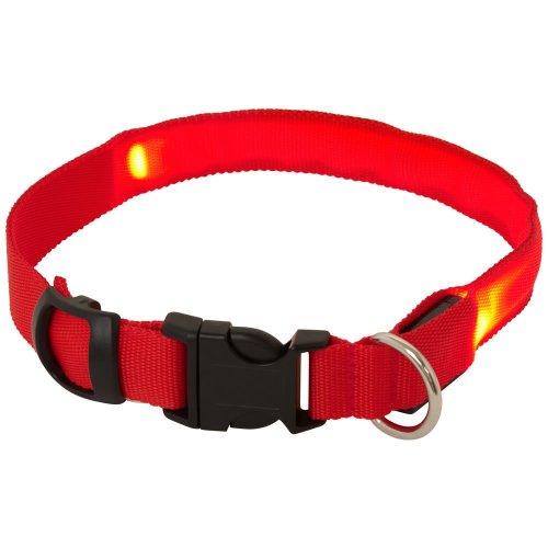 Bunty Adjustable LED Flashing Light Dog Collar | Flashing Dog Collar