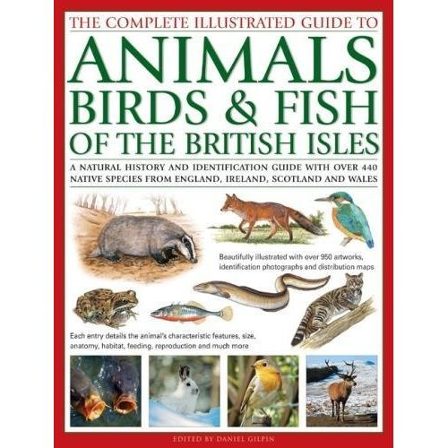 Animals, Birds & Fish of British Isles, The Complete Illustrated Guide to: A natural history and identification guide with over 440 native species...