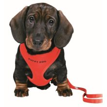 Trixie Puppy Harness With Leash, 26 - 34cm x 10 Mm, Red - Soft Dog Leash Small -  harness trixie puppy red soft dog leash small lead colours sizes