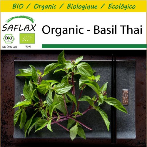 SAFLAX Potting Set - Organic - Basil Thai - 250 certified organic seeds  - Ocimum