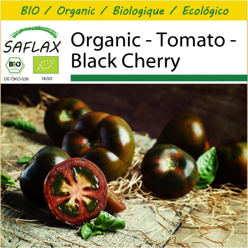 SAFLAX Potting Set - Organic - Tomato - Black Cherry - 10 certified organic seeds  - Solanum