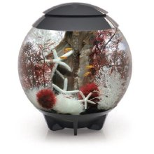 Biorb Halo 30 Led Moonlight Aquarium Grey